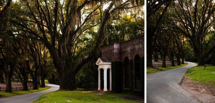 Modern Southern Inspiration Shoot via TheELD.com